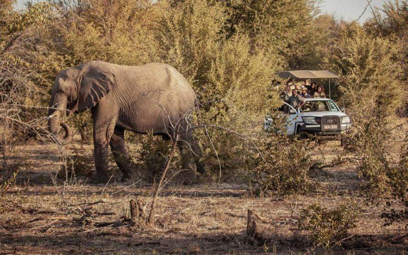 STO Activities Pricelist-safari
